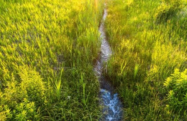 TBD Fleshman Creek - seasonal live water