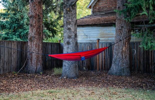 810 S Willson hammock hanging between 2 trees in the backyard