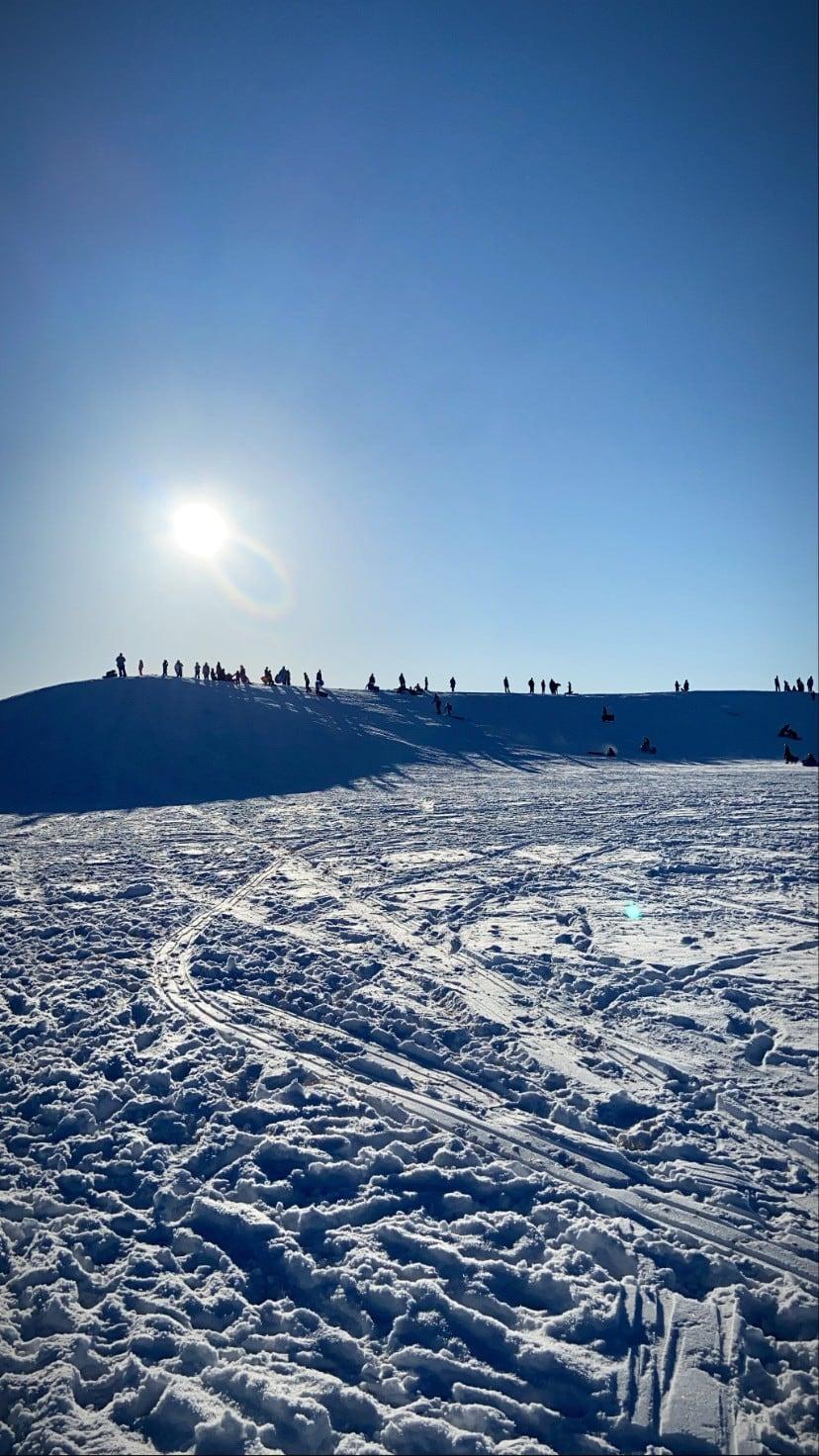 dinosaur park sledding hill