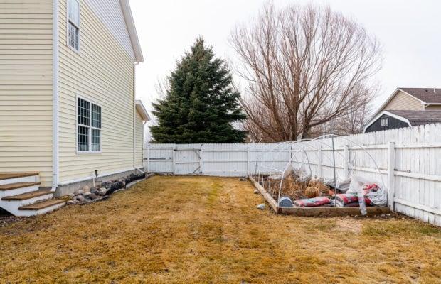1650 Bandollero back yard featuring garden